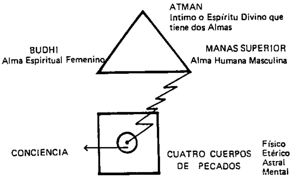 Arcanum 9 – Teth ט – Gnostic Studies